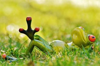 frog-1109795_960_720