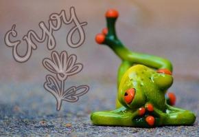 frog-914240_960_720